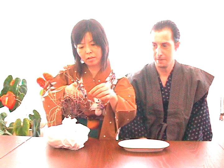 75445_videos-domesticos-da2-salamanca